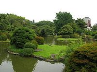小石川植物園庭園